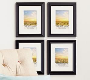 Multipacks & Frame Sets