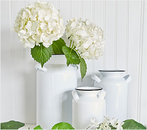 Seasonal Floral