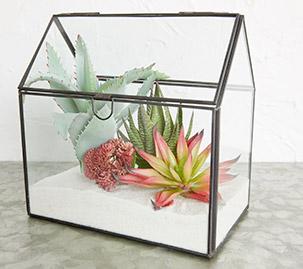 Glass House Terrarium