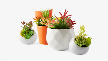 40% OFF All Garden Collection Greenery